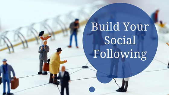Social Following: Distinguishing Money-Making Websites from the Rest